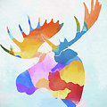 Colorful Moose Head by Dan Sproul