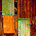 Colorful Old Barn Wood by James BO  Insogna