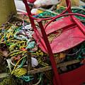 Colorful Pile 1 by Deborah Brown