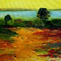 Colorful Prairie by Julie Lueders