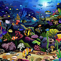 Colorful Reef by MGL Meiklejohn Graphics Licensing