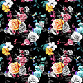 Colorful Roses by Long Shot
