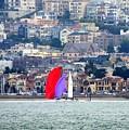 Colorful Sails by Douglas Coiner