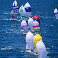 Colorful Sails In Ocean by Sharon Green - Printscapes