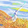 Colorful Seagull by Deborah Benoit