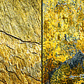 Colorful Slate Tile Abstract Composite H2 by Donald  Erickson