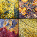 Colorful Slate Tile Abstract Composite Sq1 by Donald  Erickson