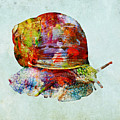 Colorful Snail Art  by Olga Hamilton