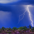 Colorful Sonoran Desert Storm by James BO  Insogna