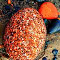 Colorful Stones V by Cristina Stefan
