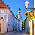 Colorful Street Of Baroque Town Varazdin  by Brch Photography