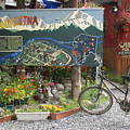 Colorful Talkeetna by Mary Ourada