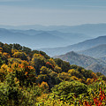Colorful Trees And Haze In The Smokies by Teri Virbickis