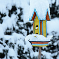 Colorful Wooden Birdhouse In The Snow by Nicola Simeoni