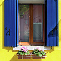 Colorful Yellow And Blue Window In Burano Venice Italy by Matthias Hauser