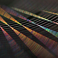 Colors Of Music by Raviprakash SS