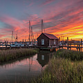 Colors Of Shem Creek - Mt. Pleasant Sc by Donnie Whitaker