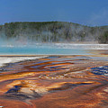 Colors Of Yellowstone by Cliff Wassmann