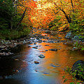 Colors On A Stream by Tony Beaver