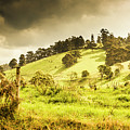 Colourful Fields And Farmyards by Jorgo Photography - Wall Art Gallery