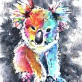 Colourful Koala by Chris Hobel