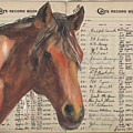 Colts Records Prince Dastan By Kmcelwaine by Kathleen McElwaine