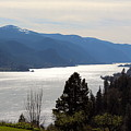 Columbia River by Nicholas Miller