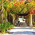 Column Flowers by Daniel Hart