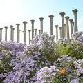 Column Flowers To The Sky by Jost Houk