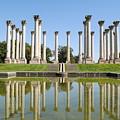 Column Reflection by Jost Houk