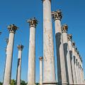 Column Row by Clark DeHart