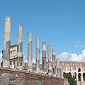 Columns Colosseum And Lamppost by Fabrizio Ruggeri