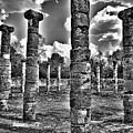 Columns Of Support by Douglas Barnard