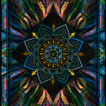 Come Together Peace Mandala by Wbk