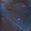 Comet Lovejoys Long Ion Tail In Taurus by Alan Dyer