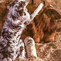 Comforting The Heifer With A Broken Leg by Elizabeth Hershkowitz