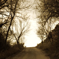 Coming Up The Drive 3 by Marilyn Hunt