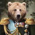 Commander Bear by Matt Van Gorkom