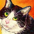 Commission Your Pets Portrait By Artist Carole Spandau Bfa Ecole Des Beaux Arts  by Carole Spandau