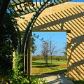 Commons Park by Diana Moya