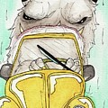 Compact Car by Julie McDoniel