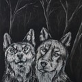 Companions  by Andrea  Darlington
