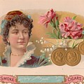 Comparison To Roses by Carol Burnworth