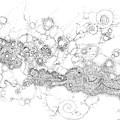 Complex Fluid A Novel Surfactancy by Regina Valluzzi