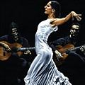 Concentracion Del Funcionamiento Del Flamenco by Richard Young