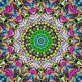 Concentric Colors Abstract by Phil Perkins