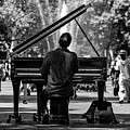 Concert In The Park by Pixabay