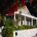 Conch House In Key West by Susanne Van Hulst
