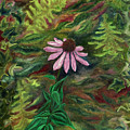 Coneflower by FT McKinstry