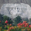 148219-confederate Carving  by Ed  Cooper Photography